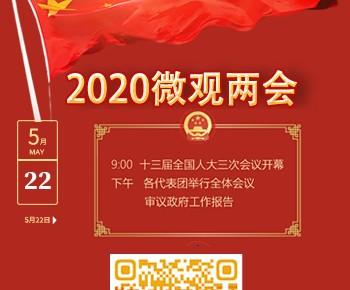H5丨2020微观两会