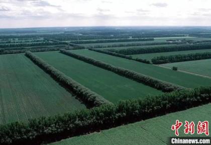 """黑龙江植被生态持续转好 助力粮食总产量""""十六连增"""""""