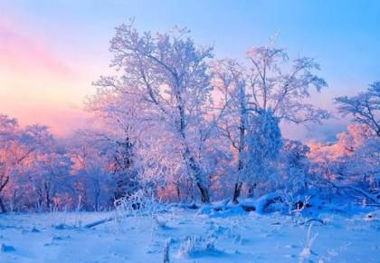 吉林旅游体育消费年⑤丨活动多、优惠大,吉林市喊你一起赏雾凇、滑粉雪