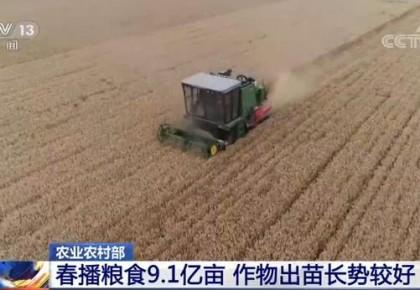 农村农业部:5月份农业农村经济运行持续向好
