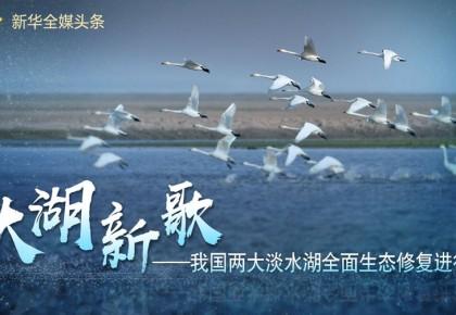 大湖新歌——我国两大淡水湖全面生态修复进行时