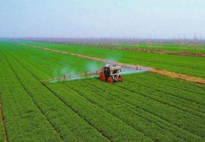 如何守牢粮食能源安全线?