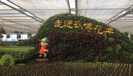 第九届吉林冬季农博会2月2日启幕