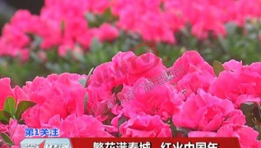 """【过大年】长春儿童公园邀来看""""花花世界"""""""