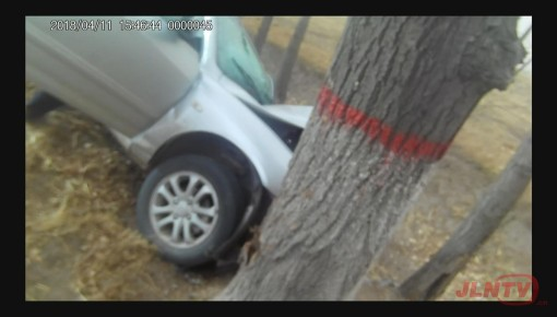 【围观】别睡了刘师傅,你车撞树上了!