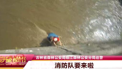 【视频】临江:老人河边洗衣遭遇河水暴涨 危急时刻森林公安伸援手