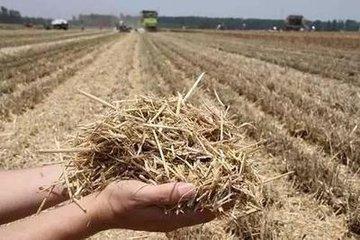 吉林秸秆覆盖还田保护性耕作面积达到560万亩,增长13倍