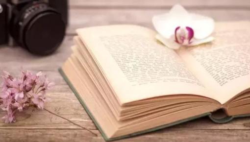 聚焦时代主题 彰显阅读之美——第28届全国图书交易博览会取得显著成效