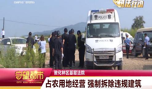 【执法视频】占用农地经营 强制拆除违规建筑没商量