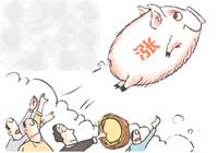 7月我省猪肉价格持续上涨 蔬菜水果价格以降为主
