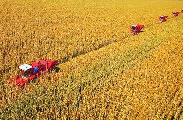 农业农村部部长韩长赋:中国农业有底气应对经济风险