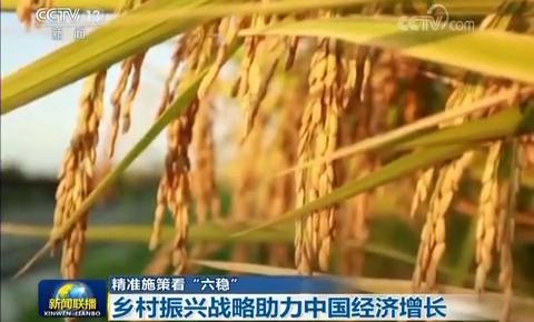 """【精准施策看""""六稳""""】乡村振兴战略助力中国经济增长"""