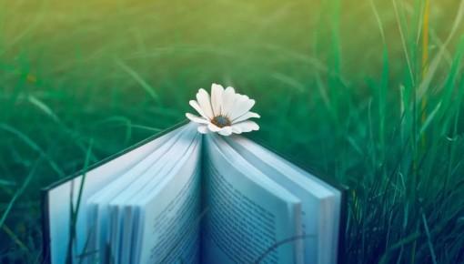 【优选书单】这5本好书推荐,快来收藏!