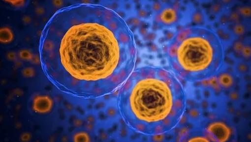 干细胞治疗曝重磅消息!多家大企业入场 中国干细胞药物上市提速