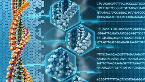 研究人员完成迄今最大规模的中国人基因组测序 有助于了解中国人口基因结构