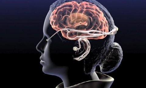 玩游戏、听音乐、常深思……这些习惯有益大脑