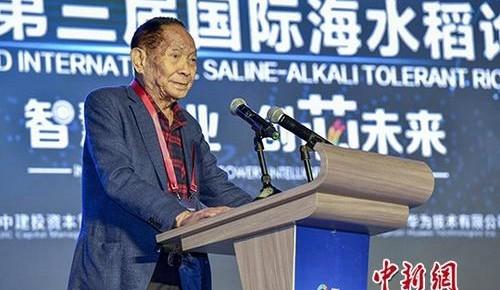 """袁隆平谈""""海水稻""""的未来:8到10年在中国发展到1亿亩"""