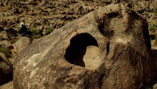 新发现!21亿年前地球上就有能自主运动的生物了