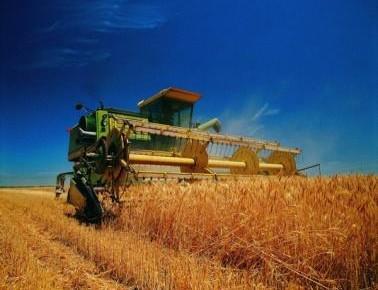 """经济日报评论员:推进农业农村发展重在""""优先"""""""