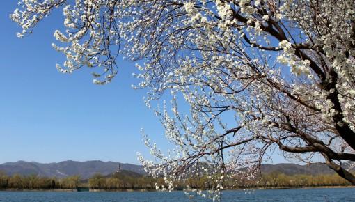 一年之计在于春!春季养生保健要注意五点