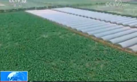 农业农村部:中央财政支持轮作休耕3000万亩