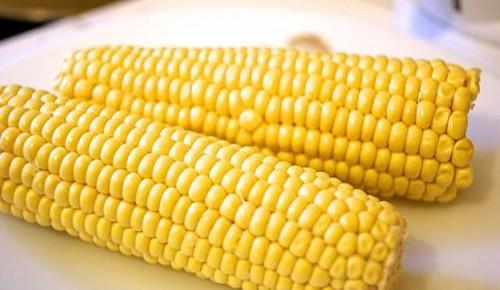 这两种玉米、水稻种子即日起停止生产
