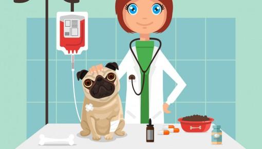 公示!45人擬確認為吉林省第五批官方獸醫