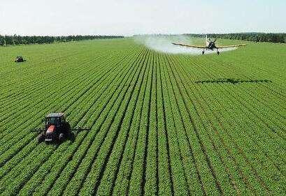 广西:见证中越农业合作20年