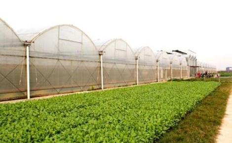 万博手机注册省第二批省级现代农业产业园名单公示