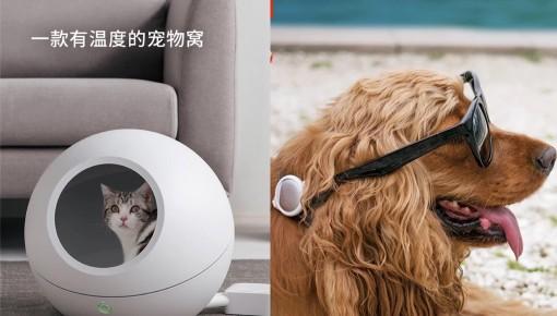 """自動喂食機、可調節溫度的貓窩…寵物邁進""""智能家居時代"""""""