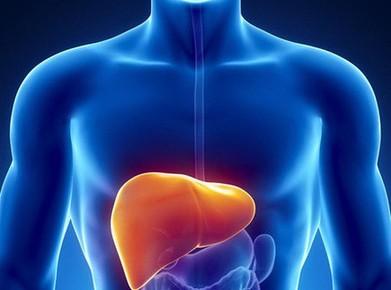 有了脂肪肝,膳食营养要从这五方面调整