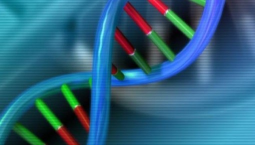 """科学家研发出DNA计算机:未来程序员拿试管""""写""""代码?"""