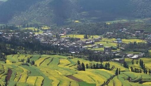 提高乡村社会文明程度 有的放矢:大力推动乡村文化振兴