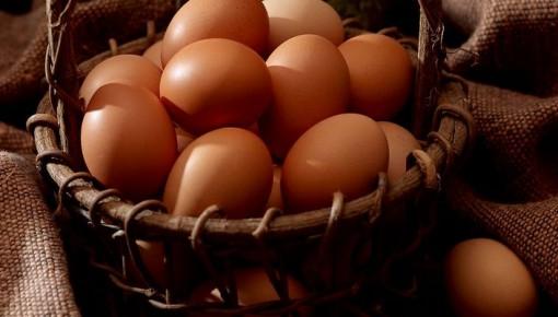 """你真的會吃雞蛋嗎?快來看這份靠譜的""""吃蛋指南"""""""