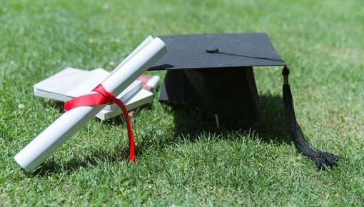 填志愿要看好!普通高校在吉林省招生计划有调整