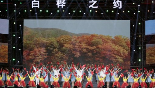 55万网友与白桦相约 第14届中国�桦甸白桦节隆重启幕