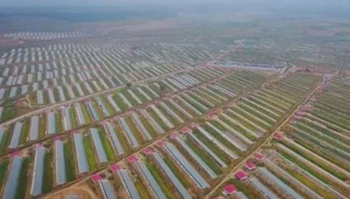 第二批国家农村产业融合发展示范园创建名单公布,吉林省这五个地方入选