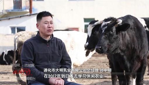"""新型农业经营主体带头人孙中明:""""养牛大王""""变形记"""