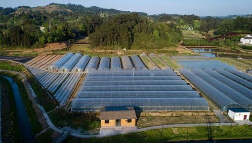 """农业农村部:要吸引更多资源向乡村汇聚 推动解决乡村产业发展的""""人、地、钱""""难题"""