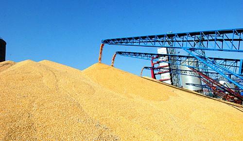 粮食安全基础夯实 农民收入持续增长