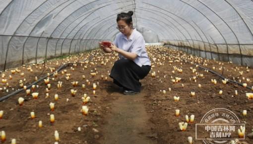 """【对话】""""美丽乡村""""蝶变之路 中国青年网这位记者给出六个字评价!"""