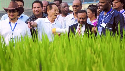 礼赞70年⑬:从自力更生到中国智慧