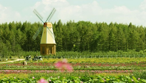 www.yabet19.net省46家企业(园区)上榜休闲农业和乡村旅游星级示范名单!