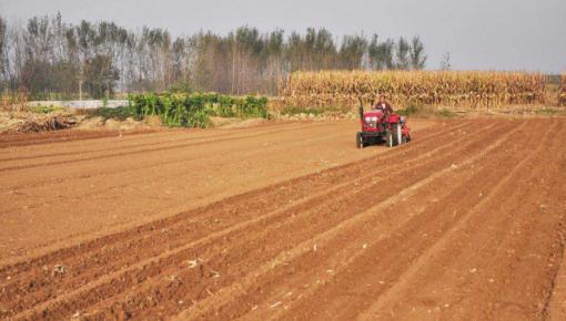 """河南""""三个持续""""让全国1/16的耕地上产出全国1/10的粮食"""