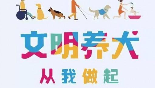 养狗的朋友注意啦!整治非法养犬专项行动开始啦!