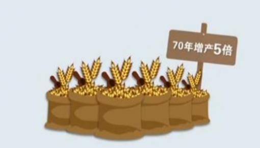 数说新中国丨五种主要粮食产量多年世界第一