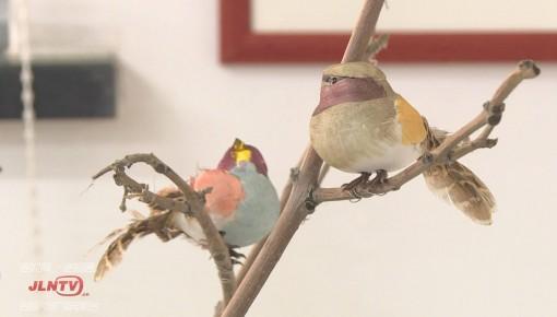 长春市北海湿地公园开展鸟类科普展