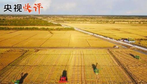 立德樹人 強農興農