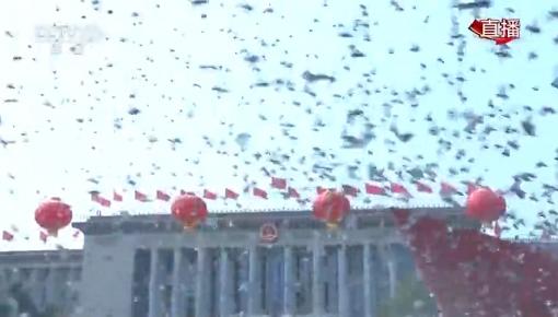 国庆盛典上放飞的7万只鸽子,最后都飞哪去了?