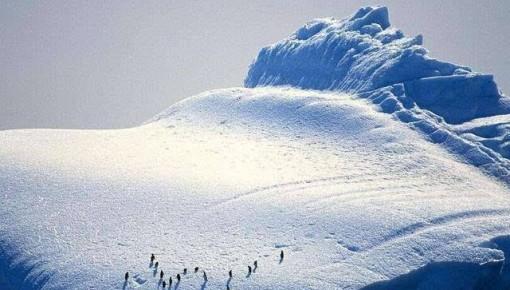 中国探险家将首次无助力无补给穿越南极